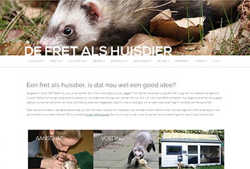 Over deze website
